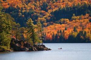 Le Canada vous réserve plusieurs surprises, l'Alqonquin park en Ontario est l'une d'elle.