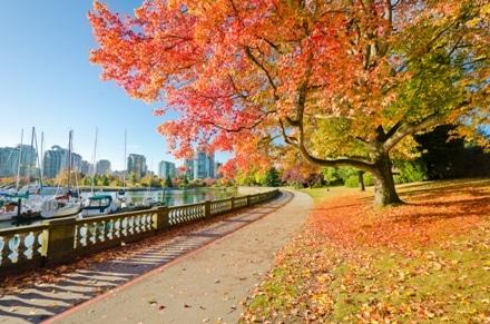 Découvrez les couleurs de l'automne au Canada lors d'un Permis Vacances Travail.