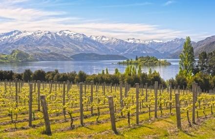 Wanaka en Nouvelle-Zélande près de Queenstown, un cadre idéal pour travailler.