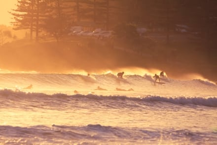 La Gold Coast en Australie est un endroit privilégié des surfeurs.